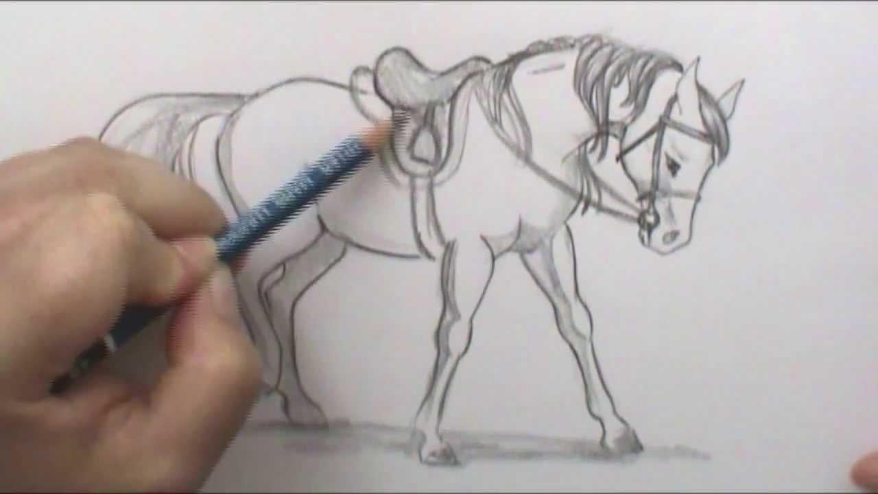 1280x720 Bonus How To Draw An English Saddle Narrated