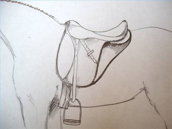 600x450 How To Draw A Saddle On A Horse Ehow