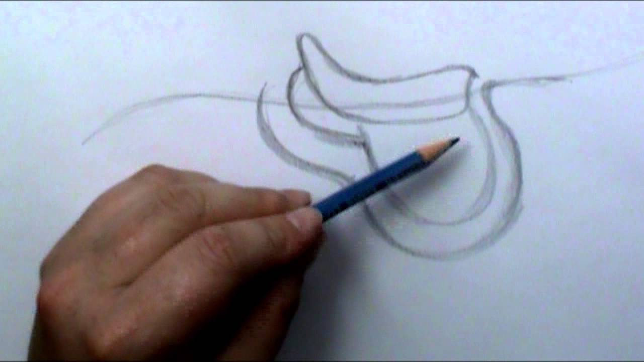 1280x720 How To Draw A English Saddle
