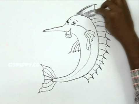 480x360 How To Draw A Cartoon Sailfish
