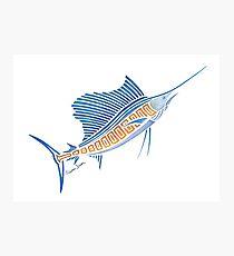 210x230 Sailfish Drawing Photographic Prints Redbubble