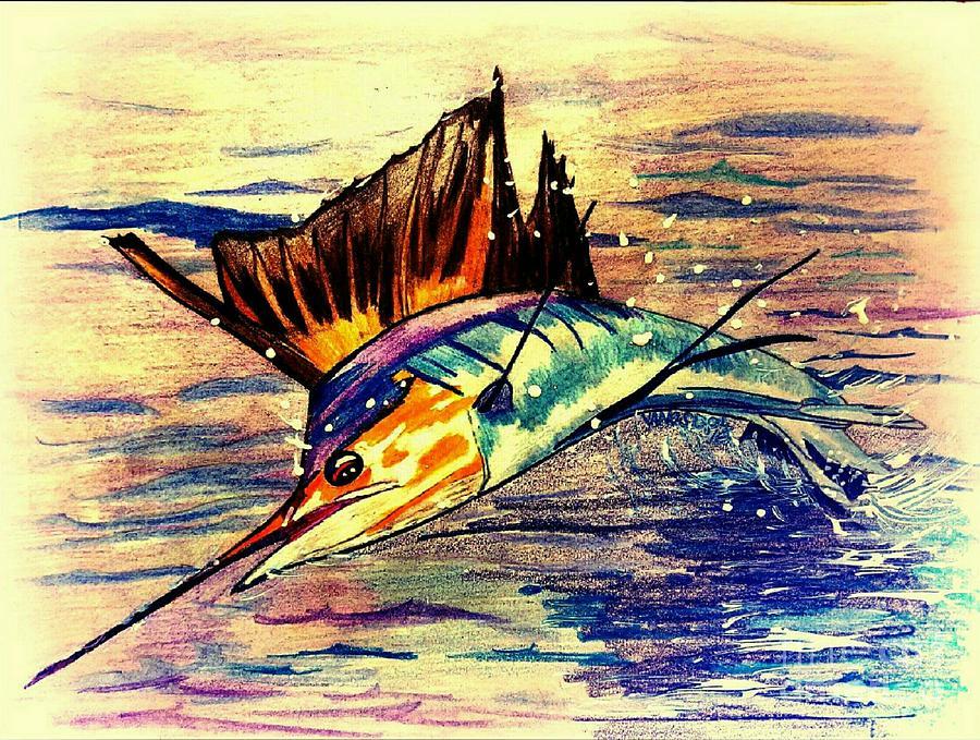 900x679 Sailfish Saltwater Fishing Drawing By Scott D Van Osdol