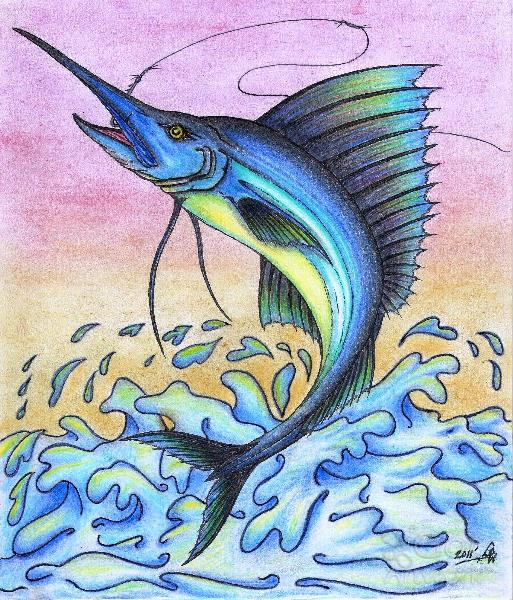 513x600 The Giant Blue Sailfish Original Drawing Drawing By Gene Pippert