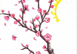 300x210 Sakura Flower Drawing Drawn Cherry Blossom Sakura Flower