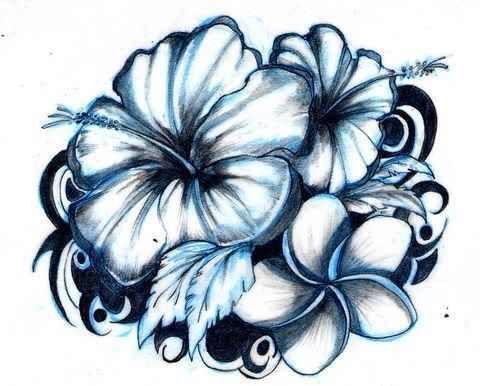 how to draw a samoan flower