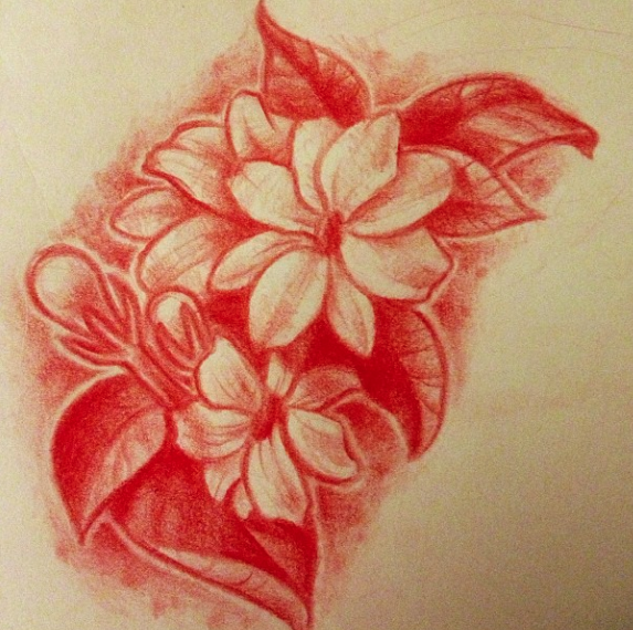 573x570 Drawing Of My Tattoo. Sampaguita Flowers By Lindsay Bugbaker