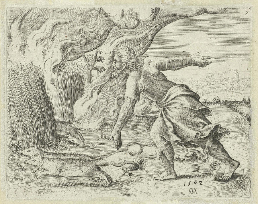 900x713 Samson Puts The Wheat Fields Of The Philistines In Fire Drawing By