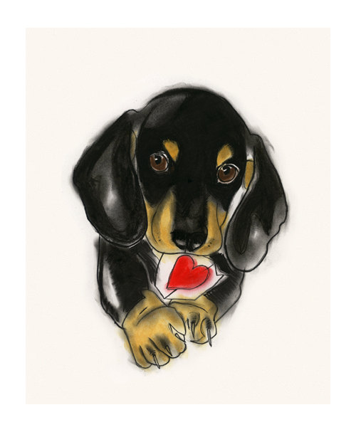 500x607 Dachshund Dog Art Sausage Dog Doxie Dog Art By Matouenpeluche