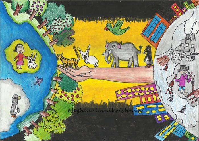 700x497 Dessin Academy Save Animals Drawing Contest