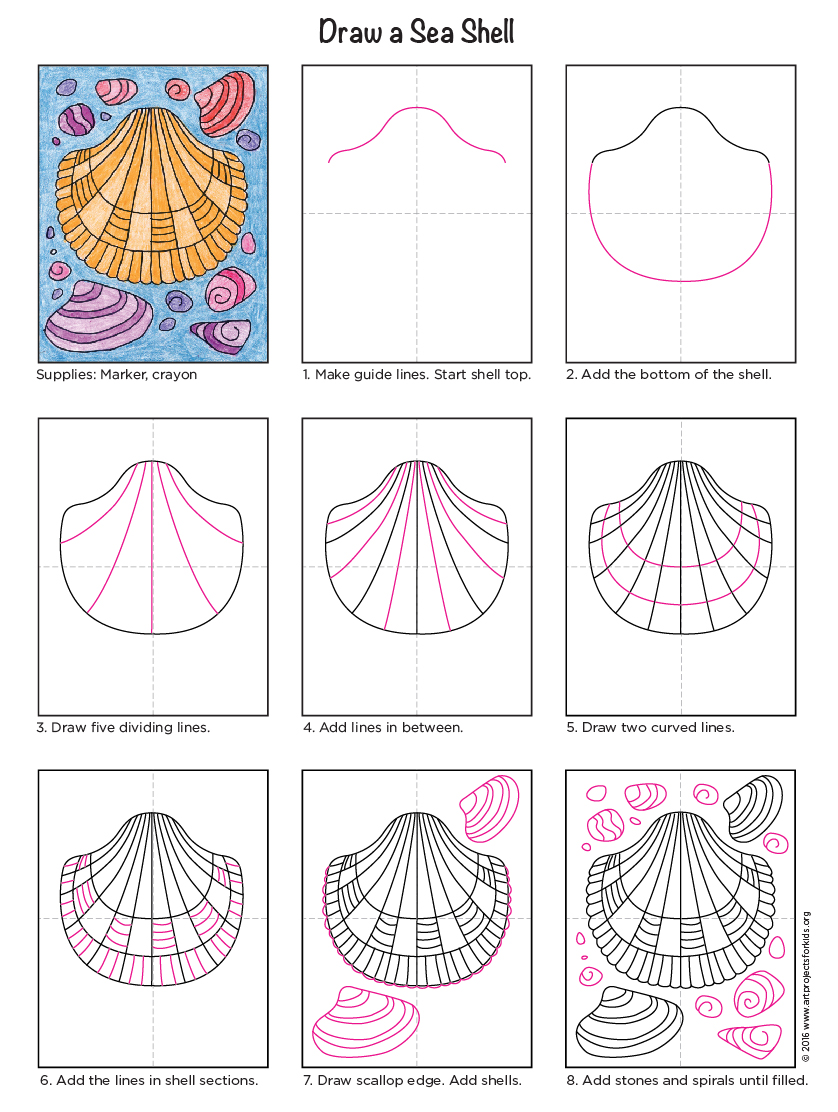 838x1112 How To Draw A Sea Shell