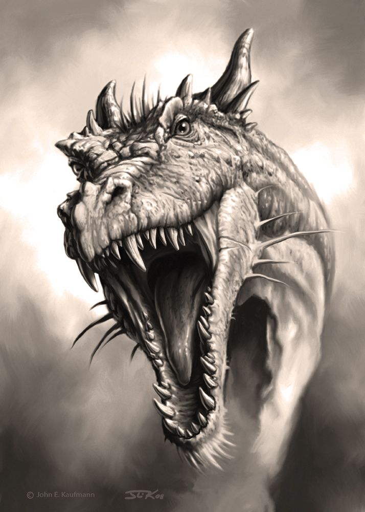 714x1000 908 Best Dragon Mugshots Images On Dragon Art, Dragons
