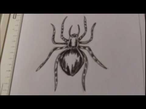480x360 How To Draw A Creepy Spider Tattoo Idea
