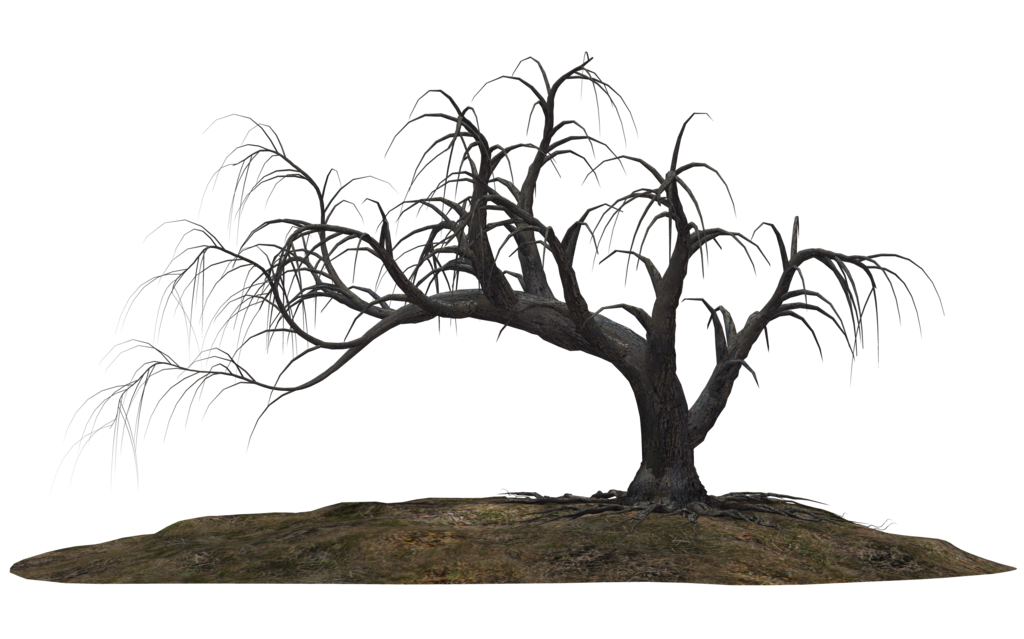 1024x639 Creepy Tree 19 By Wolverine041269