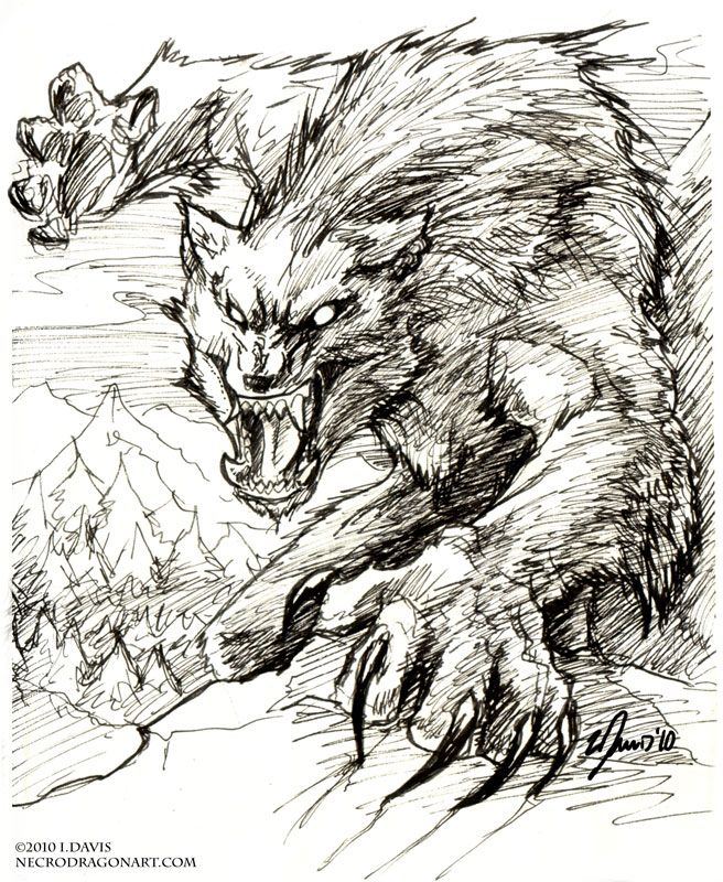 656x800 Werewolf, Inks. By Drakhenliche On Ink