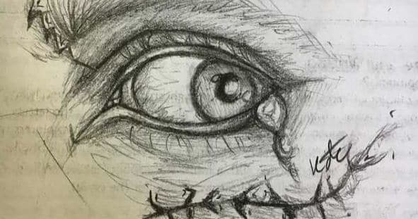 591x311 To Cope With Her Schizophrenia, Artist Starts Drawing Her