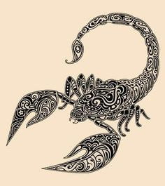 236x265 Different Scorpion Tattoo Ideas Tattoos Scorpion