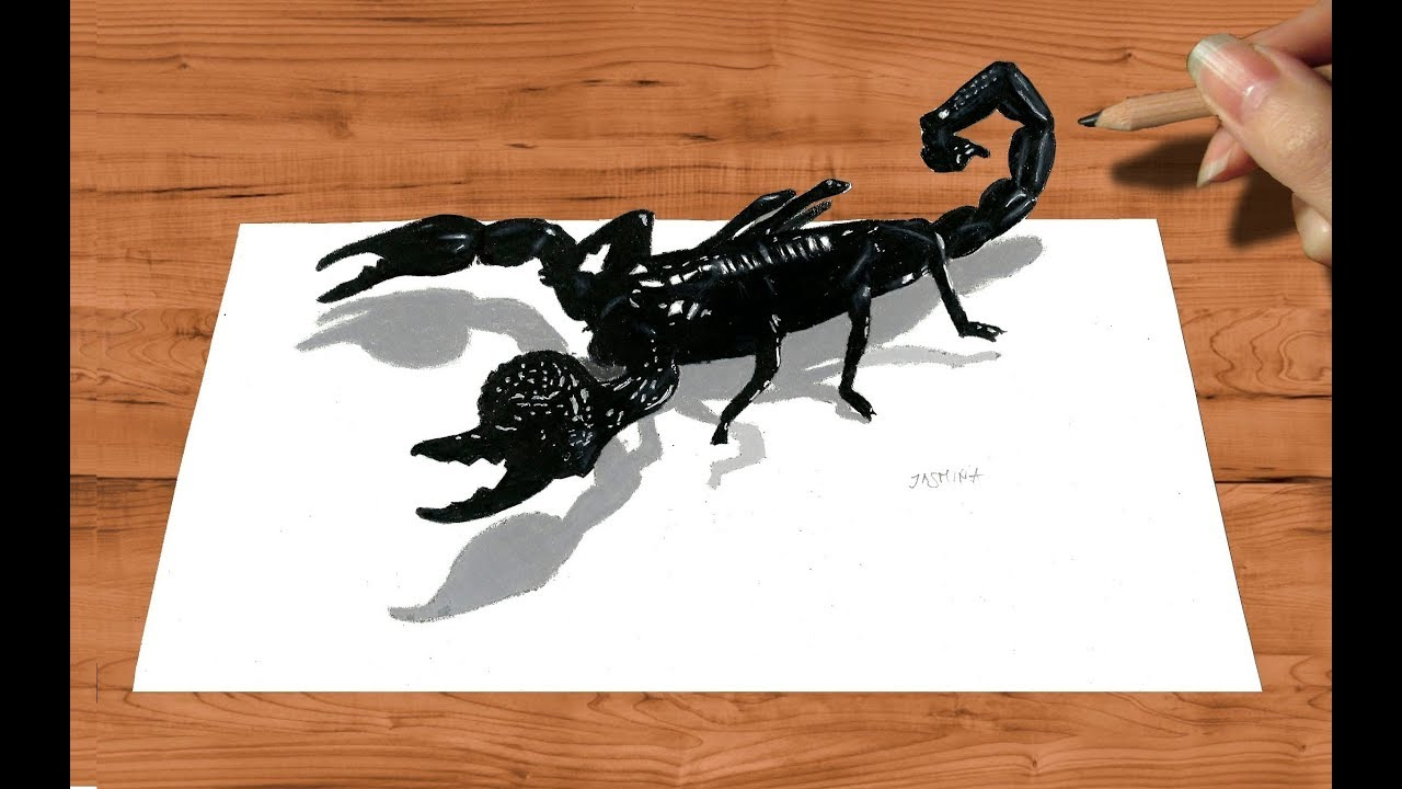 Scorpion Pencil Drawing at GetDrawings com | Free for