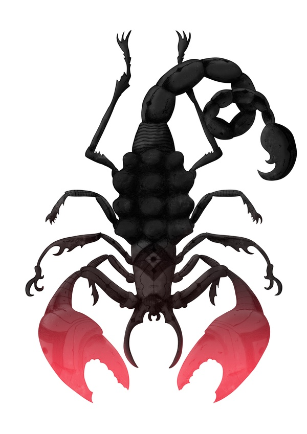 600x849 20 Best Scorpions Images On Scorpion, Scorpio And Artists
