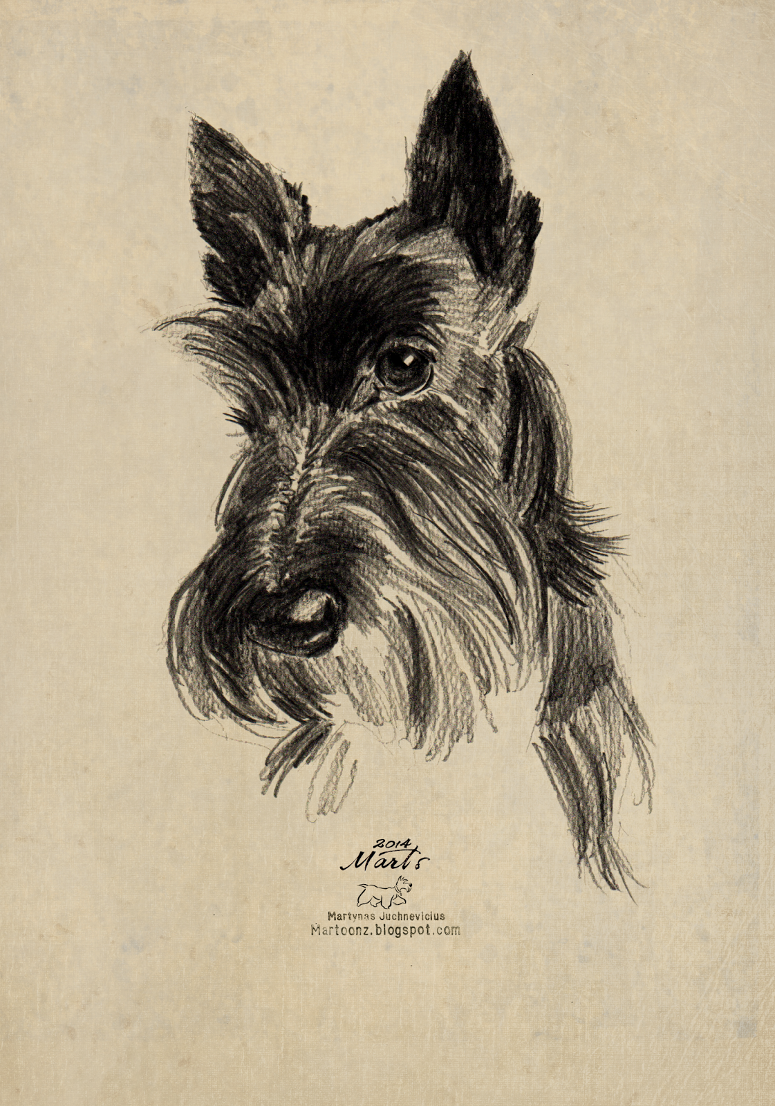 1121x1600 I Just Love This Little Guy. All Things Scottish Terrier