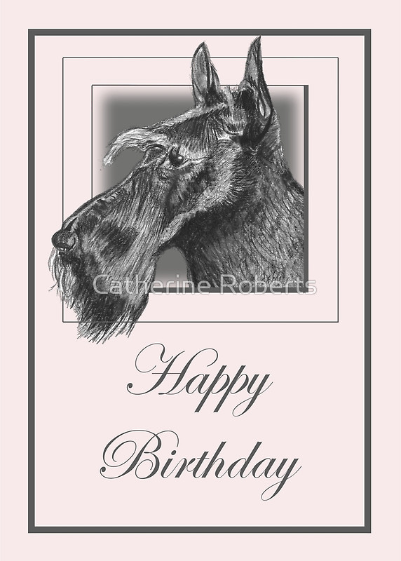 572x800 Pencil Drawing Of Scottish Terrier (Scottie Dog) On Birthday Card