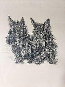 225x300 C.1910 Ruth Ferris Pair Of Scotties Original Charcoal Drawing