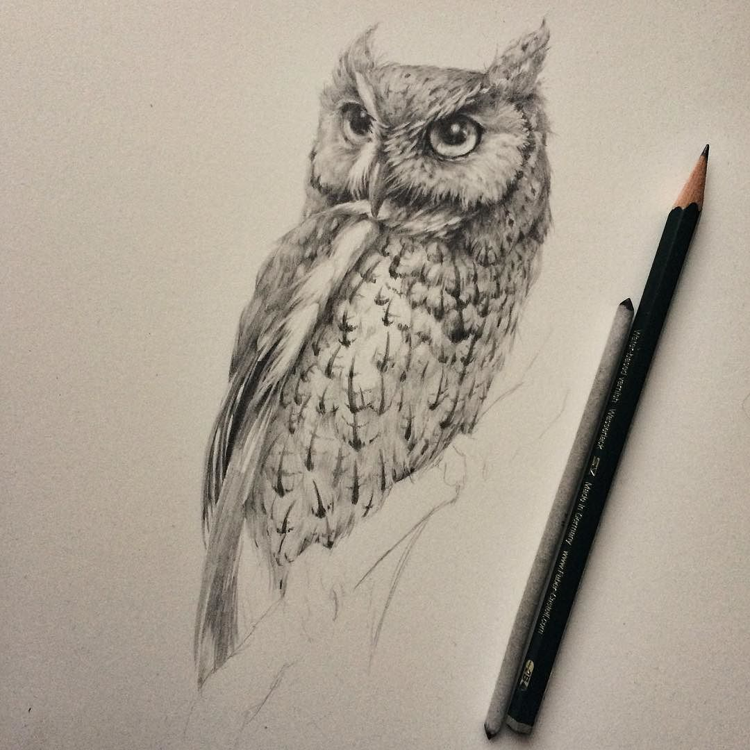 1080x1080 Nearing The Finish Line On This Original Northern Screech Owl