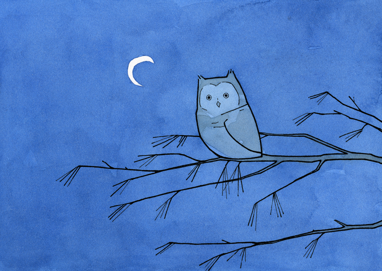 788x559 Screech Owl And Moon Drawing 100 Owls