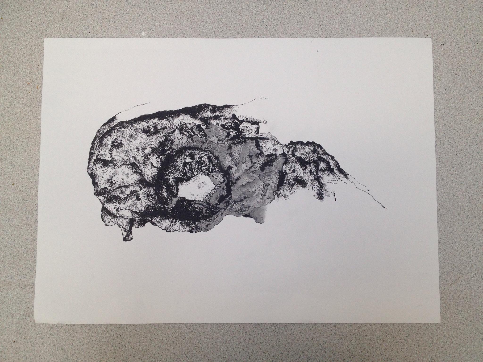 2048x1536 Skull Screen Print Francesrosetredget