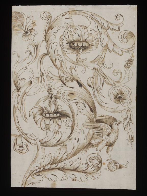 576x768 Decorative Acanthus Scrollwork With Bird Of Prey And Snail