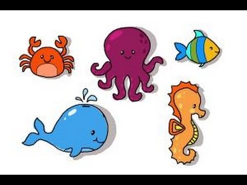 480x360 How To Draw Ocean Animals