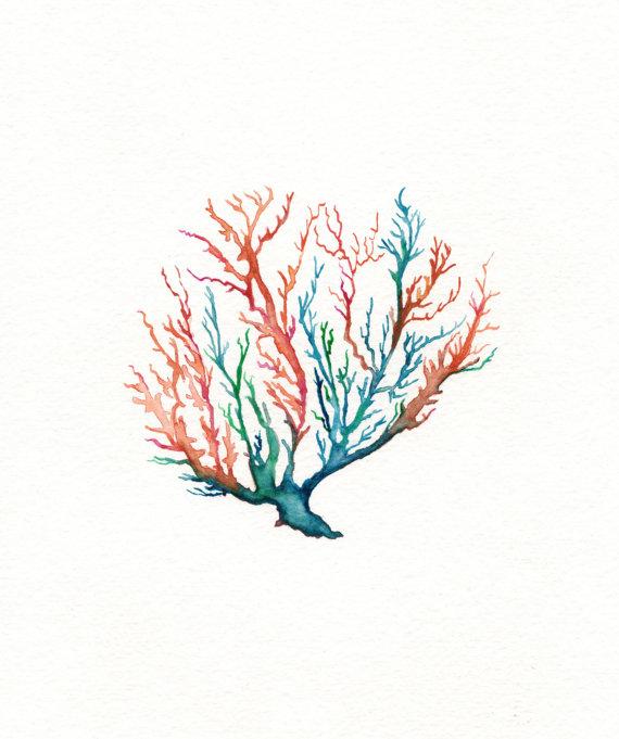 5 Sea Coral Coral Teal Aqua Orange Watercolor On Etsy