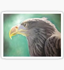 210x230 Sea Eagle Drawing Gifts Amp Merchandise Redbubble