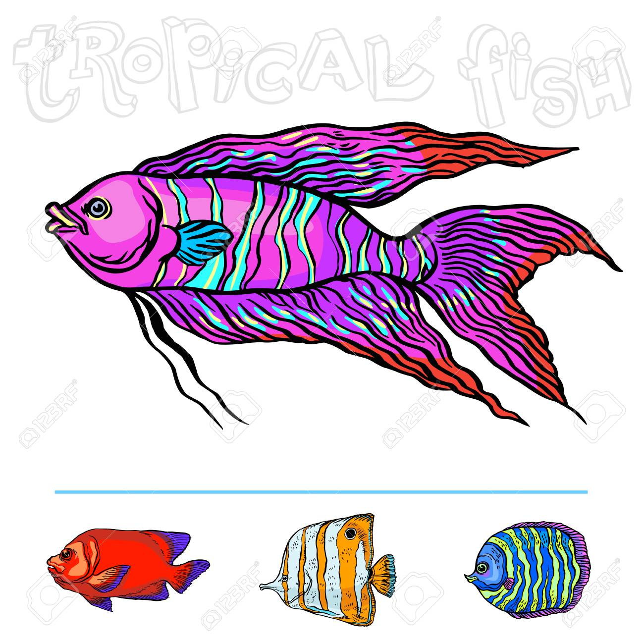 1300x1300 Bright Tropical Sea Fish Vector Hand Drawing Linear Illustration