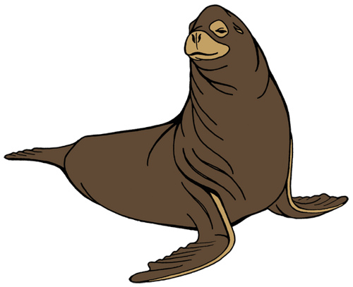 sea lion drawing at getdrawings com free for personal use sea lion rh getdrawings com cartoon sea life cartoon seals