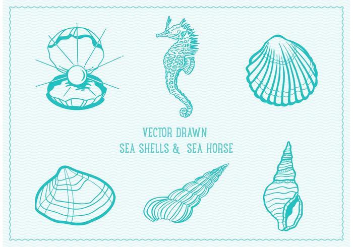 700x490 Free Vector Drawn Sea Shells
