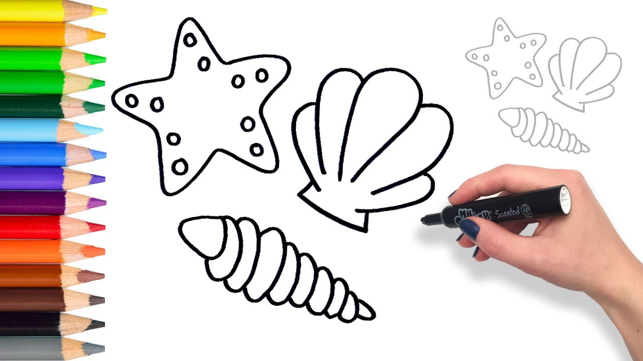 1280x720 Learn How To Draw Sea Shells Coloring Pages For Kids