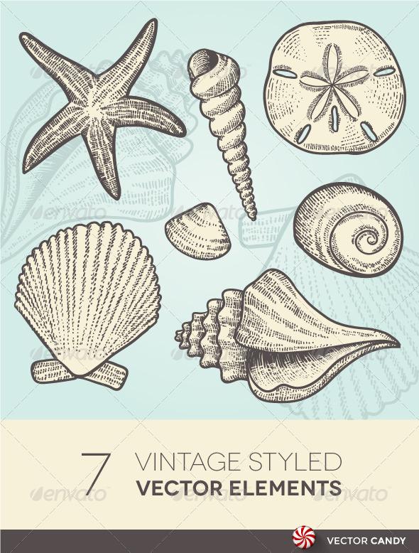590x778 Vintage Beach And Ocean Seashells Vector Elements By Vectorcandy