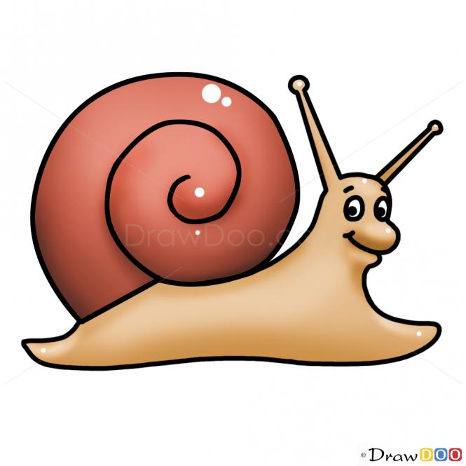 665x665 How To Draw Snail, Kids Draw Art Snail, Funny
