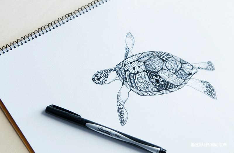 800x524 Sea Turtle Drawing Tumblr