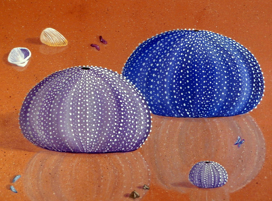 900x666 Sea Urchins On The Beach Painting By Karyn Robinson
