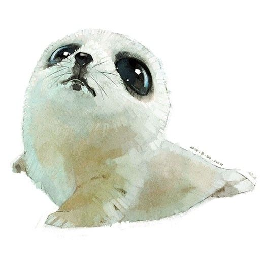 520x541 252 Best Baby Seals Images On Adorable Animals, Baby
