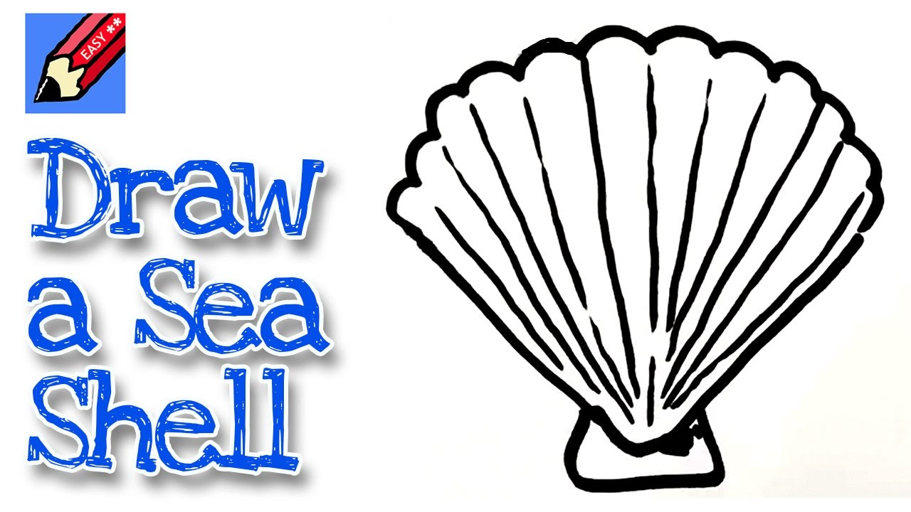 1280x720 How To Draw A Sea Shell Real Easy