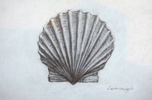500x329 Myles Cavanaugh Scallop Shell Art Love Scallop