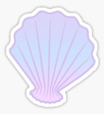 210x230 Seashell Drawing Gifts Amp Merchandise Redbubble