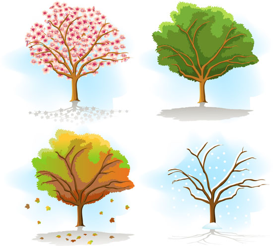 550x496 Four Seasons Tree Drawing Same Tree In Different Seasons