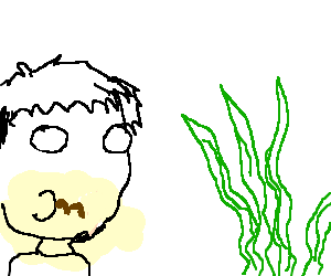 300x250 A Man Ingests A Mustache As He Observes Seaweed.