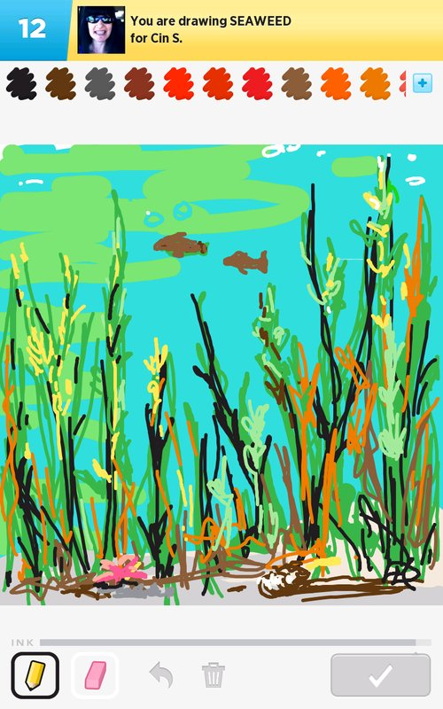 Seaweed Drawing at GetDrawings.com | Free for personal use Seaweed ...