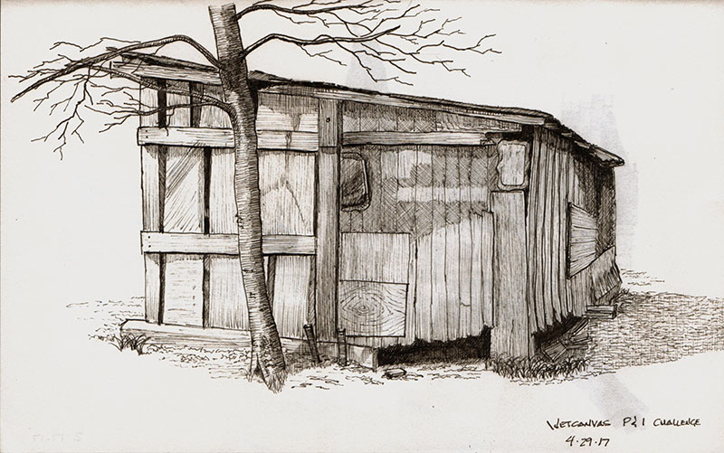 800x501 Pen And Ink Drawing Old Shed Creative Pursuits