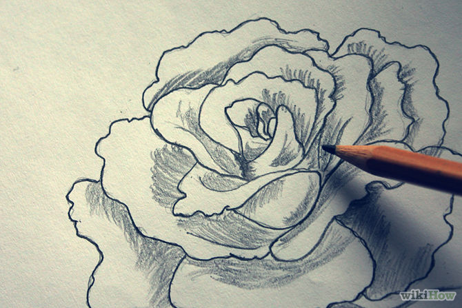 Line Drawing With Shading : Shading drawing of flowers at getdrawings free for personal