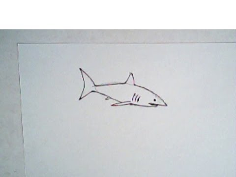 480x360 How To Draw A Shark (Simple, Easy Drawing)